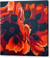 2 Poppies Canvas Print