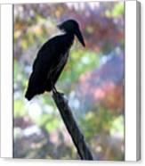 Portland Zoo Canvas Print