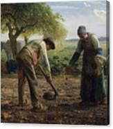 Potato Planters Canvas Print