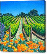 Presidio Vineyard Canvas Print