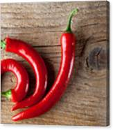 Red Chili Pepper Canvas Print