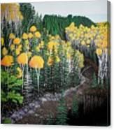 River Through Golden Forest Canvas Print