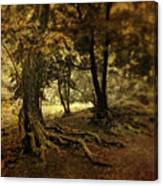 Rooted In Nature Canvas Print