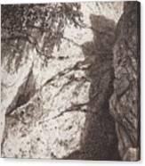 Scala 1892 27h16 Ivan Ivanovich Shishkin Canvas Print