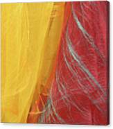 2 Scarves Canvas Print