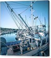 Scenery Around Monterey Bay California In Spring Canvas Print