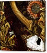 Sea Anemones, 1860 Canvas Print