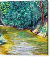 Sewp 5 24 Canvas Print