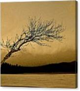 Solitude In A New Key Canvas Print