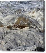 Splash Of A Momenary Water Sculpture Canvas Print