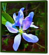 Spring Time Series Painting Canvas Print