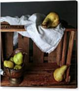Still-life With Pears Canvas Print