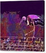 Stork Bird Fly Plumage Nature  Canvas Print