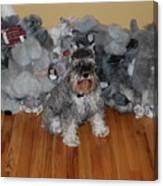 Stuffed Animals Canvas Print