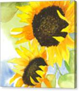 2 Sunflowers Canvas Print