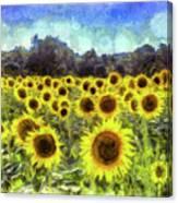 Sunflowers Van Gogh Canvas Print
