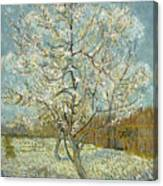 The Pink Peach Tree Canvas Print