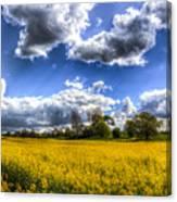 The Summer Farm Canvas Print
