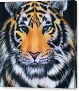 Tiger 1 Canvas Print