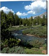 Tuolumne Meadows Canvas Print