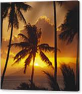 View Of Tahiti Canvas Print