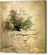 Vintage Still Life Canvas Print