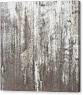 Weathered Metal Canvas Print