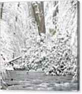 Williams River Scenic Backway Canvas Print