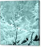 Winter Wonderland In Switzerland Canvas Print
