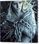 Winter's Sorrow Canvas Print