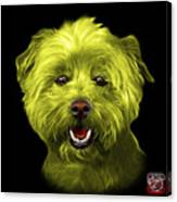 Yellow West Highland Terrier Mix - 8674 - Bb Canvas Print