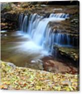 Zion Autumn Foliage Waterfall Canvas Print