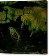20 000 Leagues Under The Sea Canvas Print
