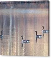 2003-geese Canvas Print