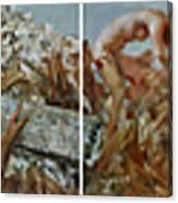 2008 05 12-2008 05 21 Canvas Print
