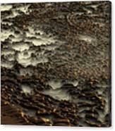 2008 5 17b Canvas Print
