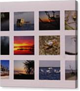 2008 Calendar Back Of Gulf Views Edition Canvas Print