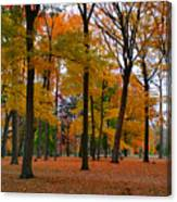 2015 Fall Colors - Washington Crossing State Park-1 Canvas Print