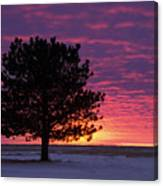 2015 New Year Sunset Canvas Print
