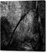 2017 Giardini Della Natura Canvas Print