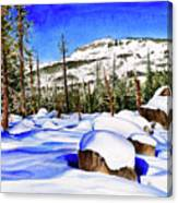 #202 Donner Summit Canvas Print