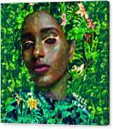 235a Canvas Print