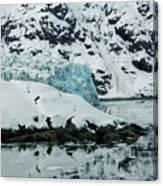 Alaska_00024 Canvas Print