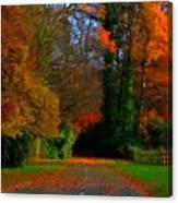 Landscape Hd Canvas Print