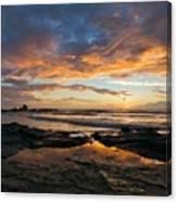 V F Landscape Canvas Print
