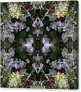 Wormhole Mandala Canvas Print