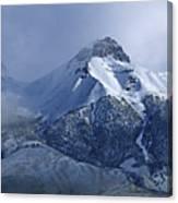2d07513 Fresh Snow On Mt. Mccaleb Canvas Print