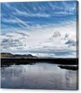Back Beach 2 - Lyme Regis Canvas Print