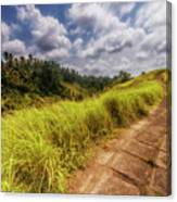 Bali Landscape Canvas Print