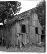 Barn In Kentucky No 69 Canvas Print